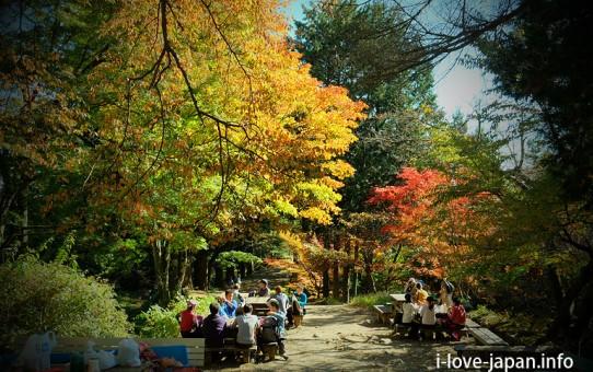 Mt.Mitake Autumn leaves(Oume-shi,Tokyo)