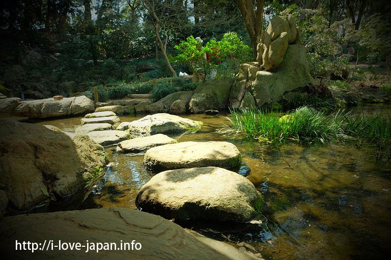 Rikugien Gardens Cherry Blossom(Bunkyo-ku, Tokyo)