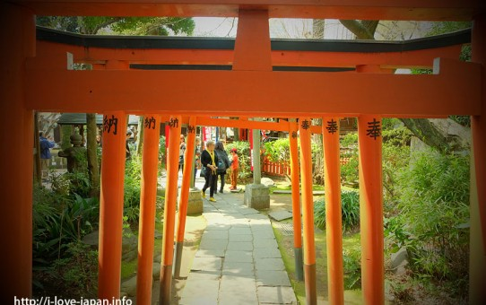 Shrines with Many Red Torii Gates in Japan