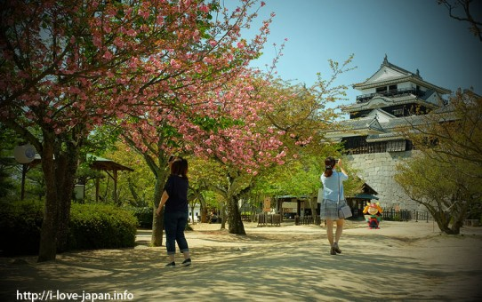 Matsuyama Castle(Ehime)