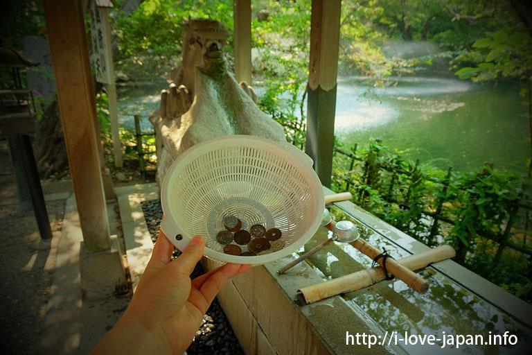 inokashira park benzaiten@What to do in kichijoji(Musashino-shi,Tokyo)