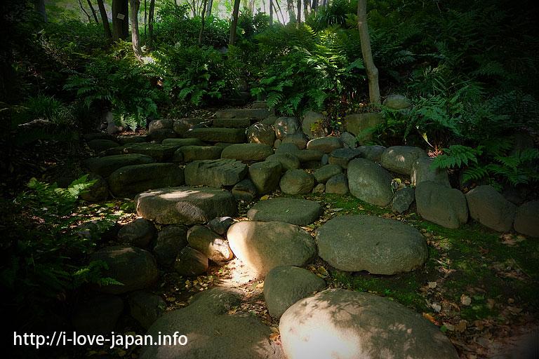 Kyu Asakura House [Important Cultural Property]