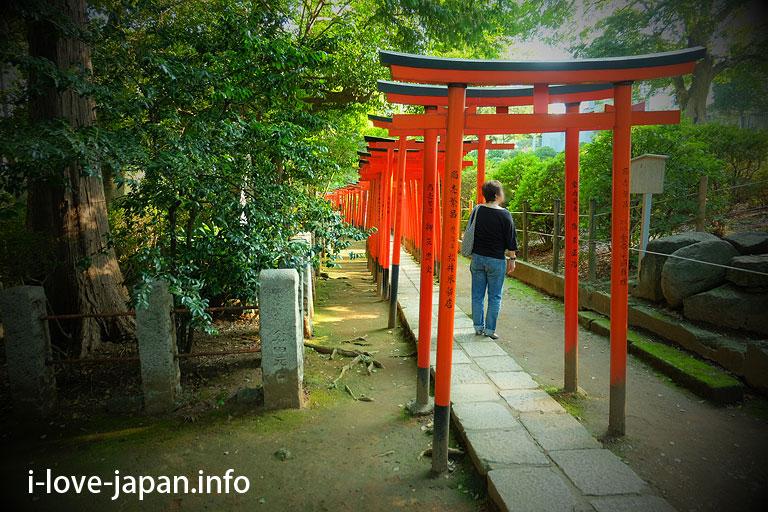 Otome-inari shrine@Nezu shrine