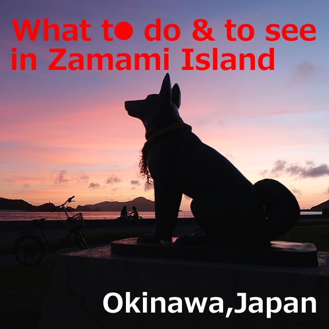 What to do & to see in Zamami Island(Okinawa)