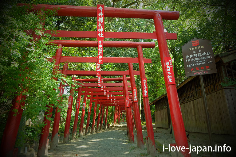[National treasure]Aoi Aso shrine(Hitoyosi,Kumamoto)