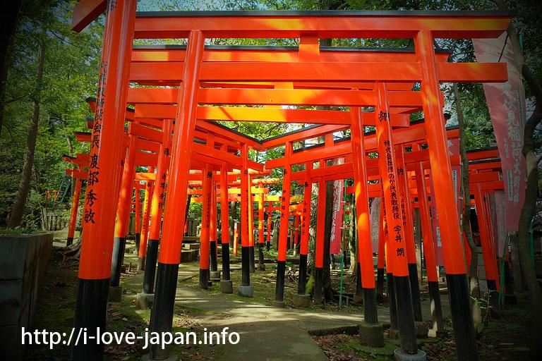 HigashiFushimi-Inari-Shrine(Nshi-tokyo-shi)