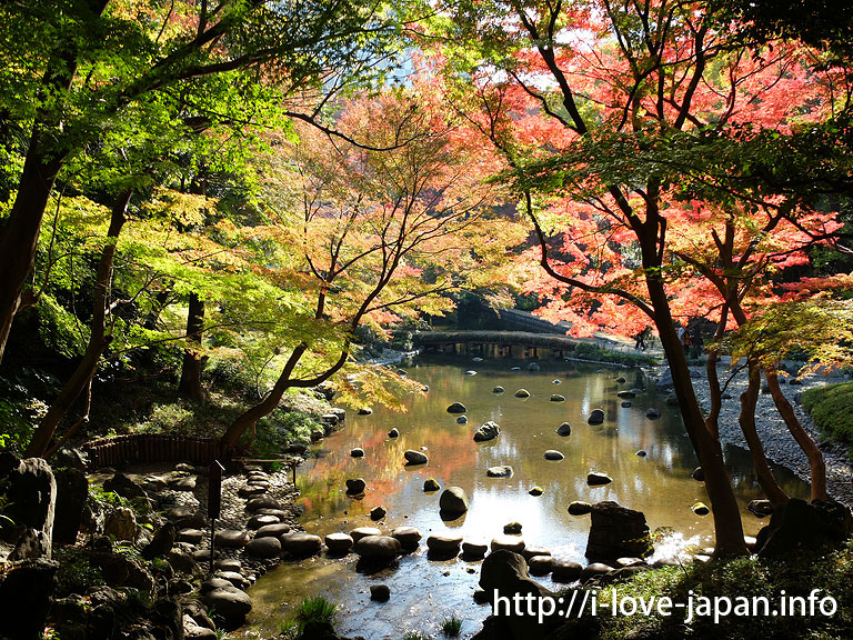 Koishikawa Korakuen Gardens in fall