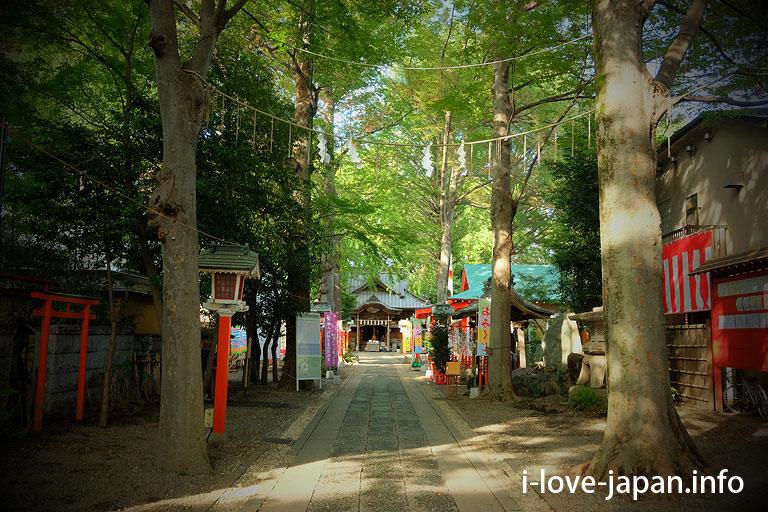 Tanashi Shrine(Nishitokyo-shi,Tokyo)