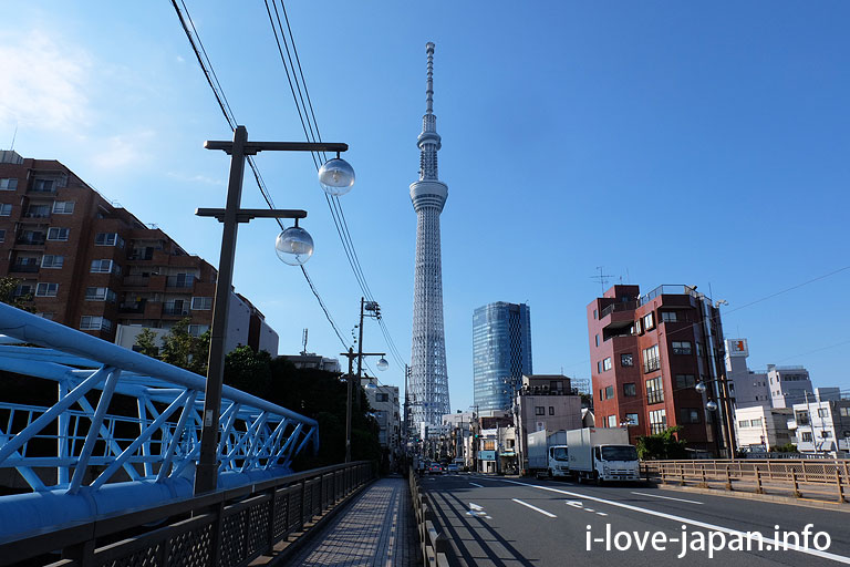 A scenic view of the sky tree.