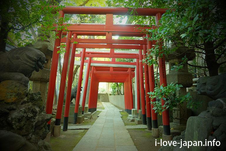 Tomioka hachimangu(Shrine)