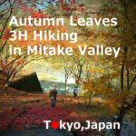 Autumn leaves hiking in Mitake Valley RiverSide Trail【3H】(Ome-shi, Tokyo)