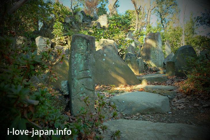 "Mountain climbing ""Otowa Fuji"" at Gokoku-ji Temple(Bunkyo-ku, Tokyo)"