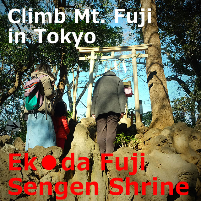 Ekoda Fuji (Sengen Shrine)! Climb Mt. Fuji in Tokyo (Nerima-ku, Tokyo)