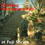 """Climbing """"Komagome Fuji"""" at Fuji Shrine (Bunkyo-ku,Tokyo)"""