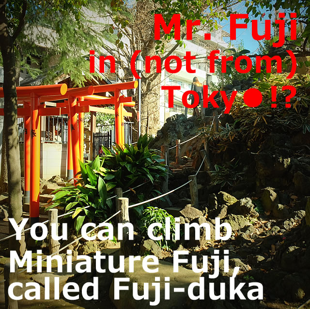 Mr. Fuji in (not from) Tokyo,You can climb Miniature Fuji(fuji-duka)