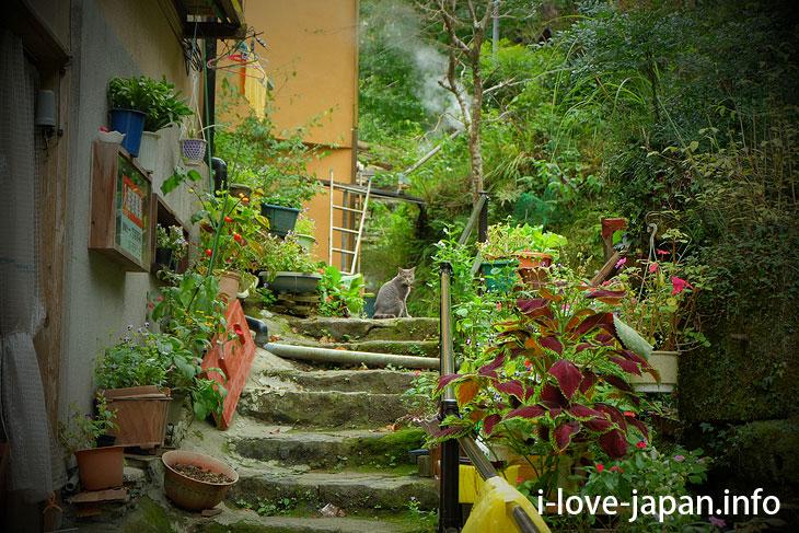 Nostalgic hot-spring town! Tsuetate Onsen
