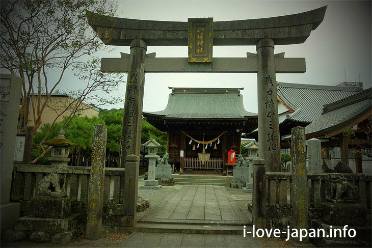 Pine tree like clouds of Kuma Yasaka Shrine