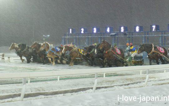 Banai Tokachi(Banei Horse Racing)