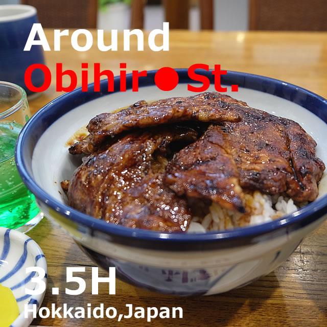 Around the Obihiro station!sightseeing in 3.5 hours (Hokkaido)