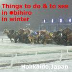 Things to do & to see in Obihiro in winter【7H】Hokkaido