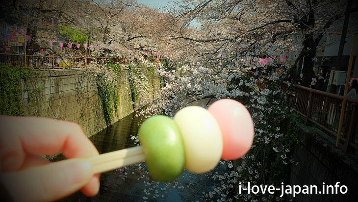 Finally cherry blossom viewing! Walk along the Meguro River