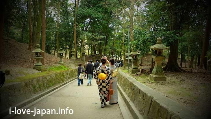 T-junction@Fushimi Inari Taisha(Shrine)
