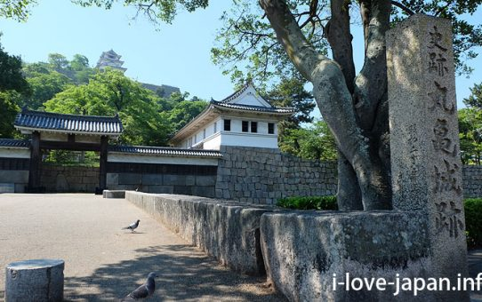 It is not only Marugame Castle! But Gourmet【Marugame half-day course】 Kagawa