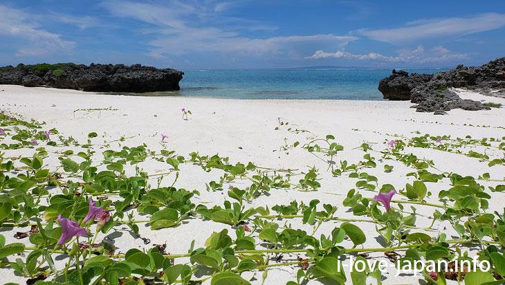 Terasaki Coast in Yoron Island