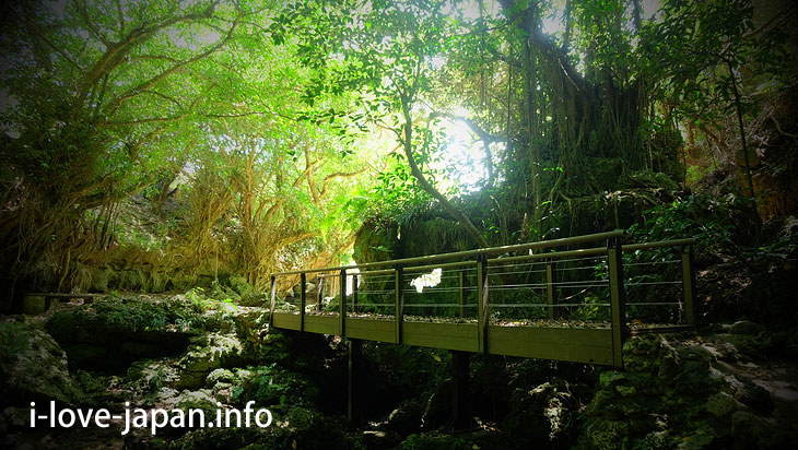 Umbuki (sea of land)@Tokuno-shima Island Tourism(Amami/Kagoshima)
