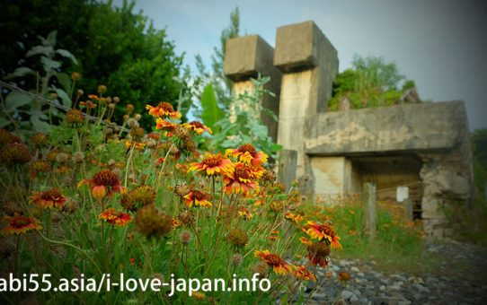 Kikaijima Island Sightseeing 19Spots(Amami,Kagoshima)