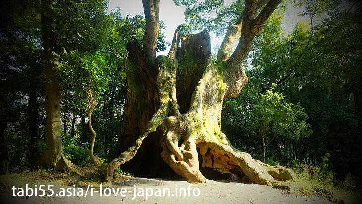 "Walking distance from Takeo Onsen(Spa) Station! Tsukazaki ""Okusu"""