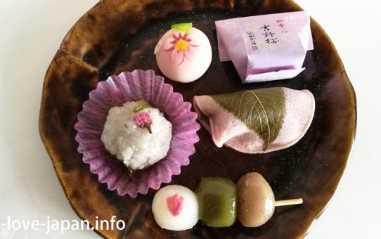 "Japanese Sweets ""Wagashi"" in Spring"