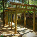 Mitarasui Jinjya Shrine!The unexplored area of the Nobeoka town(Miyazaki)