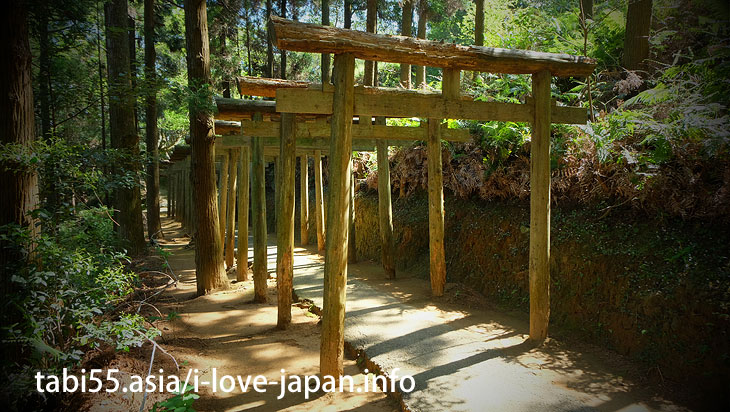 Mitarasui Jinjya Shrine!The unexplored area of the Nobeoka town(Miyazaki)