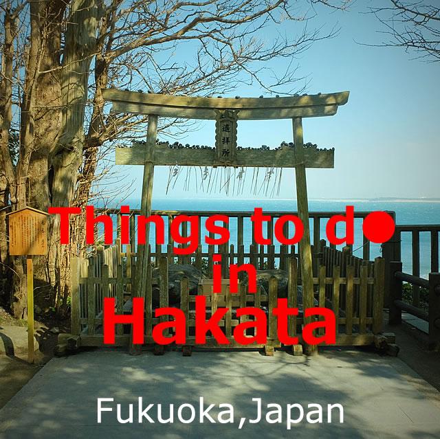 Things to do in Hakata,Fukuoka!Shrine?Food?